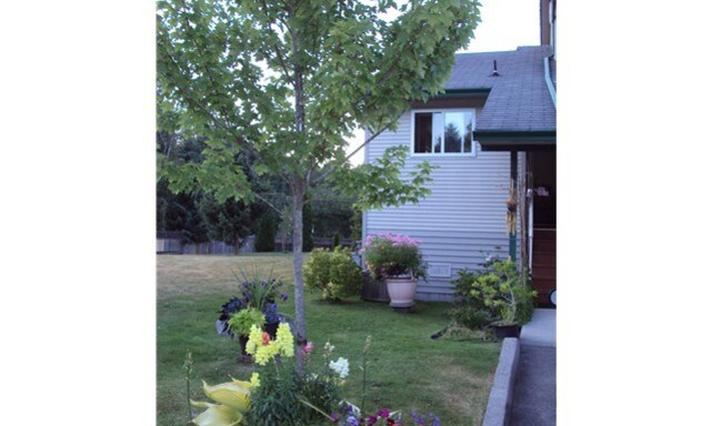 Double room in Squamish.