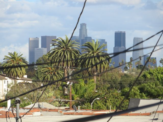 View from the deck. - typical LA - palm trees, wires and downtown skyscrapers. (Not as close as appears in photo)