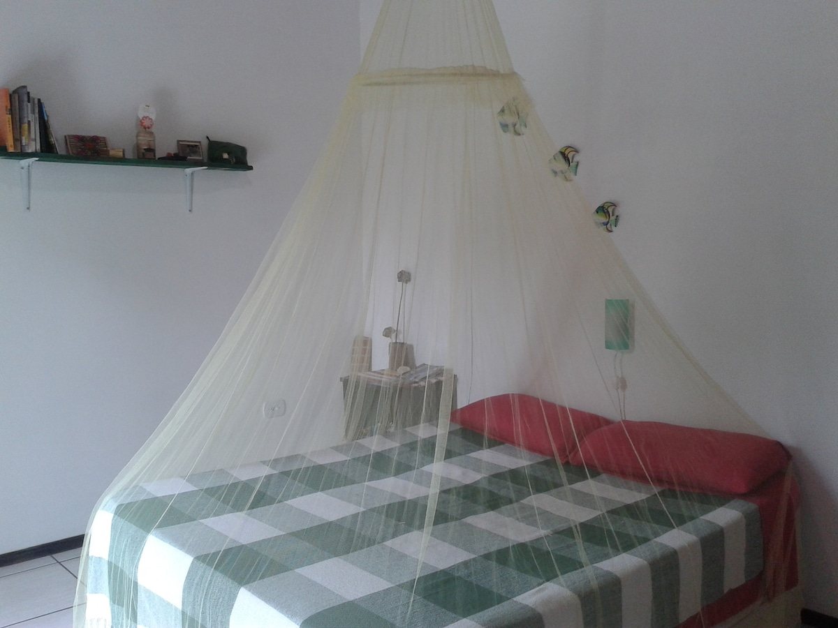 comfortable bed with mosquito net