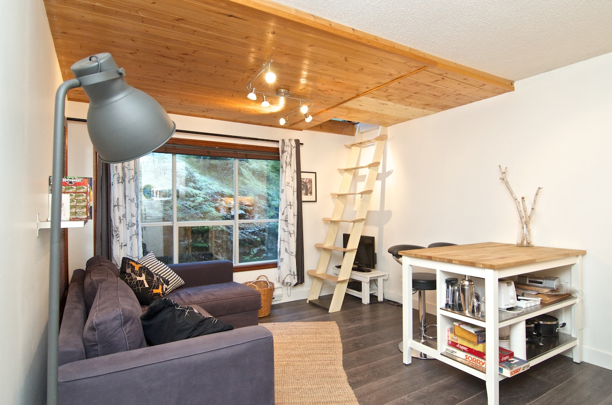 Rad Condo in Whistler, Creekside