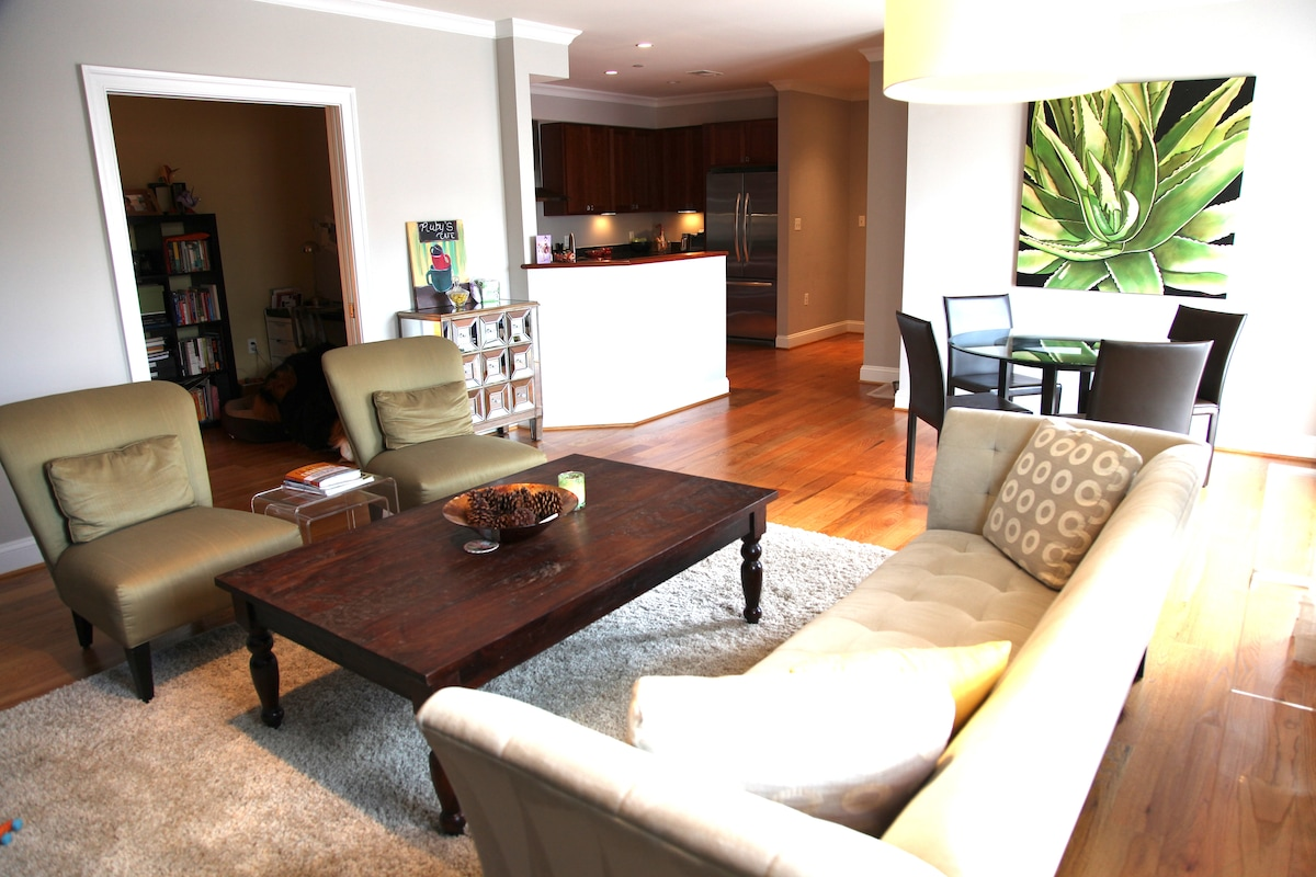 Spacious living/dining room with view of kitchen and den. Modern furniture, plenty of light, calming environment.