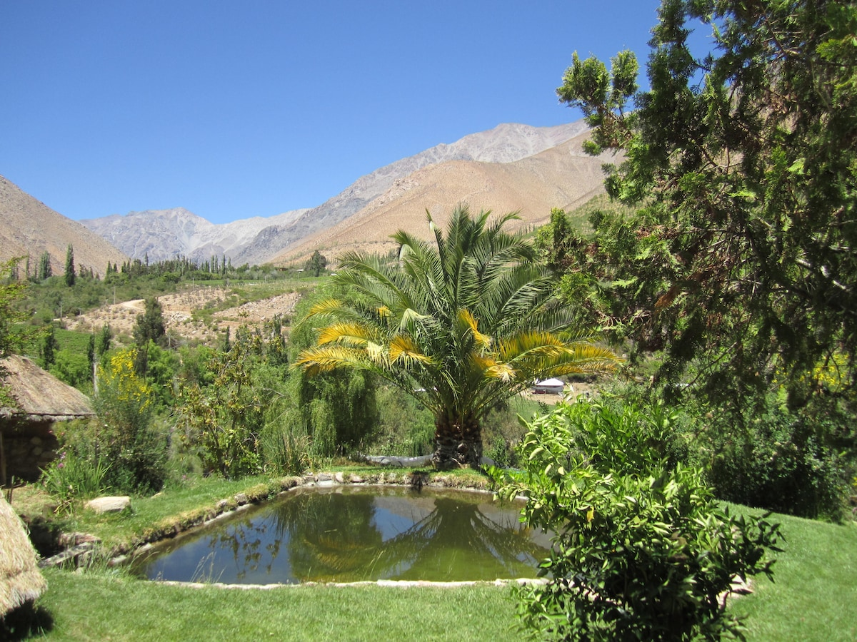 View of the Andes from Cottage, Outside Lunch area and swimming pool.