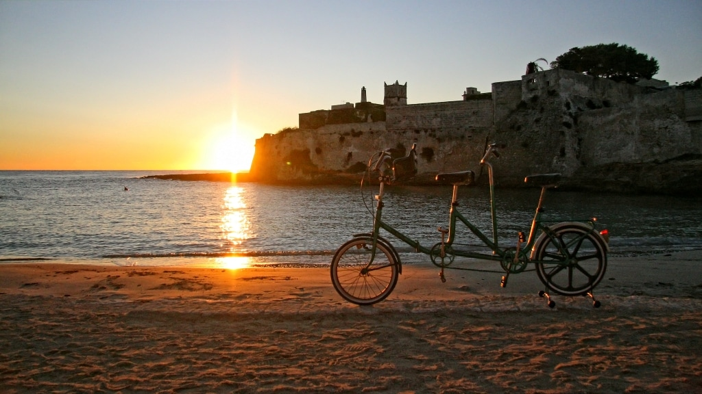 Use our bicycle to explore the coast and the ancient olive trees of our country