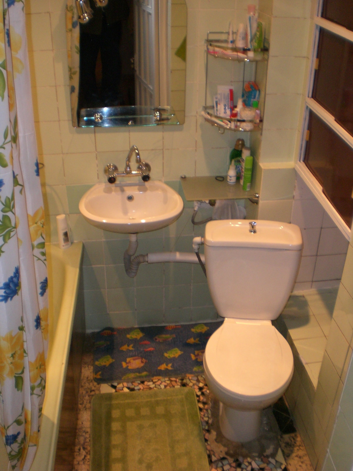 Guests' bathroom (Separate, hosts use another one)