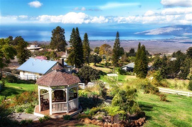 Cottage studio  with ocean view