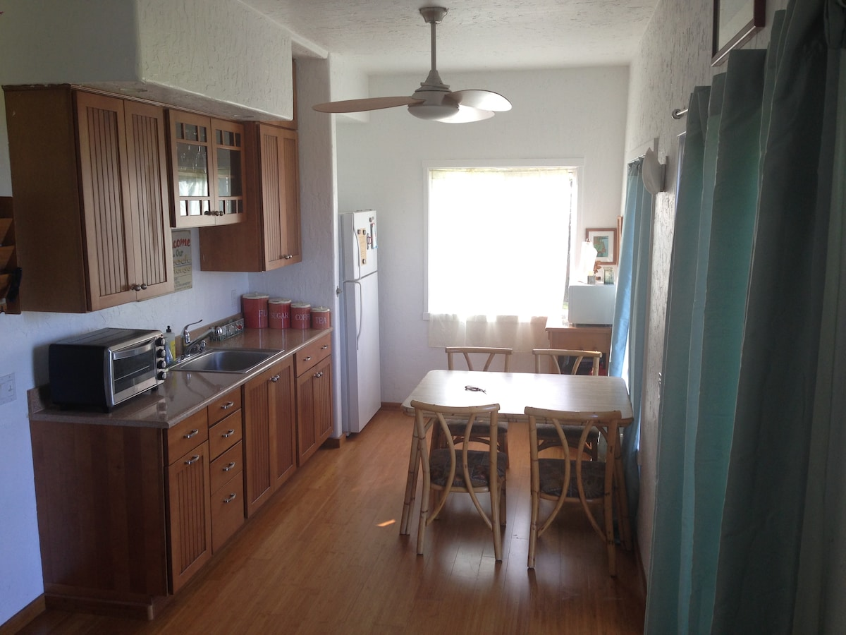 Kitchenette with full-size refrigerator, convection toaster oven, hot plate, and microwave.