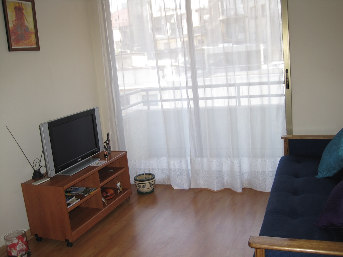 Bright and comfortable apartment. Sofa on the right is a futon, can accomodate for one person to sleep. A small terrace outside the window.