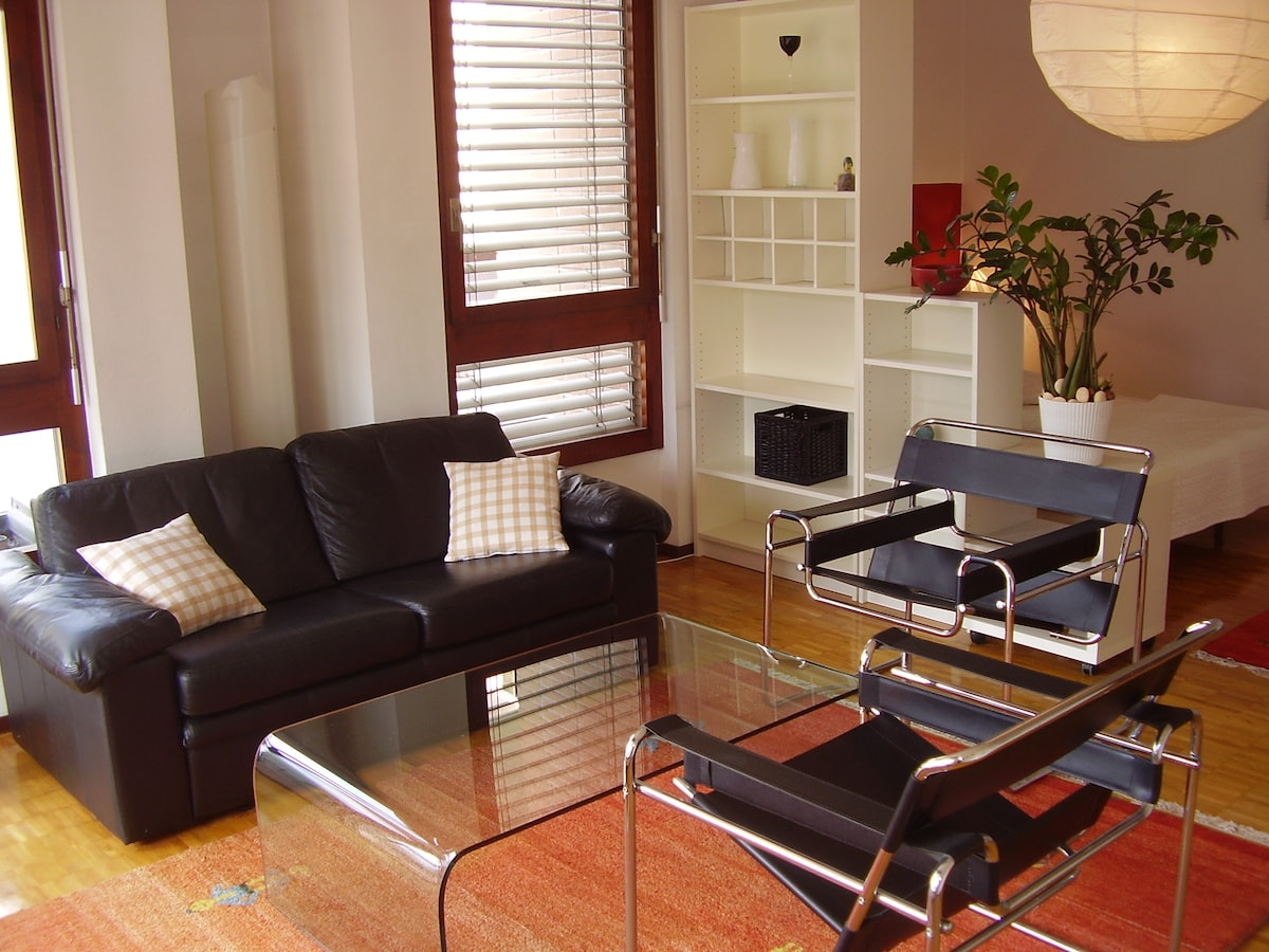 Comfortable Lugano studio apartment
