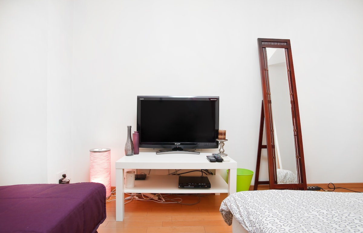 We provide a TV with many channels.