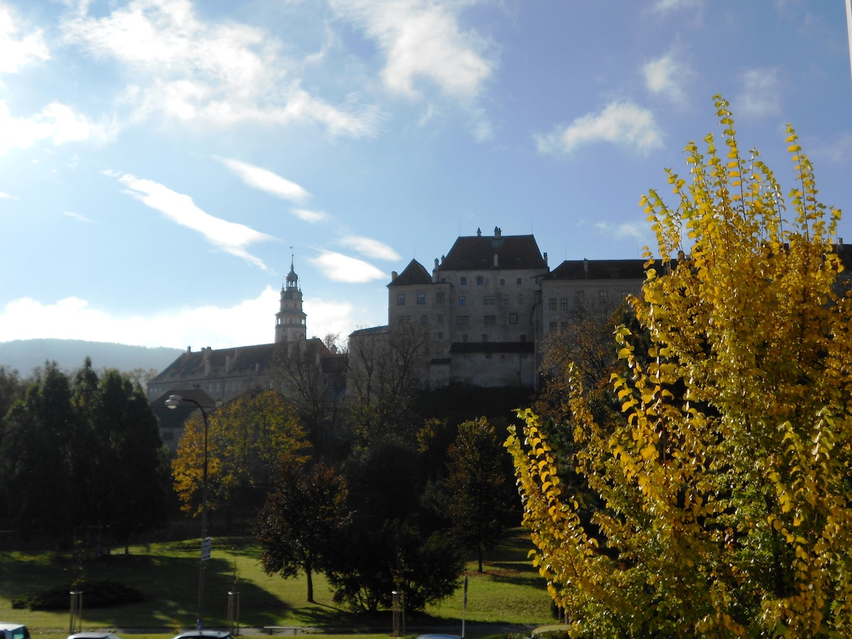 Apt with amazing view of the castle