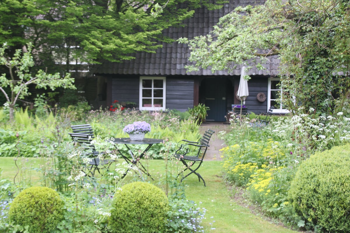 House and garden in spring