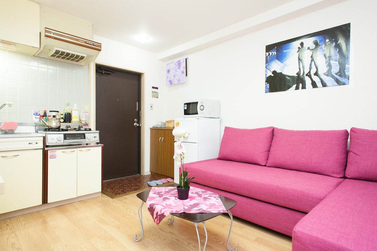 Nice 2 Room Apartment with Full Kitchen.