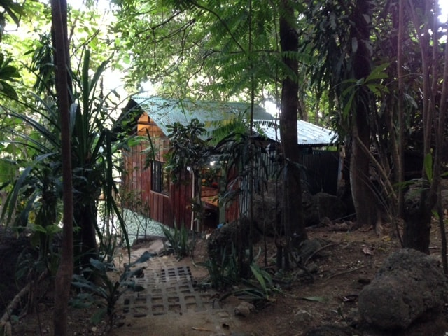 Rustic Jungle Cabina