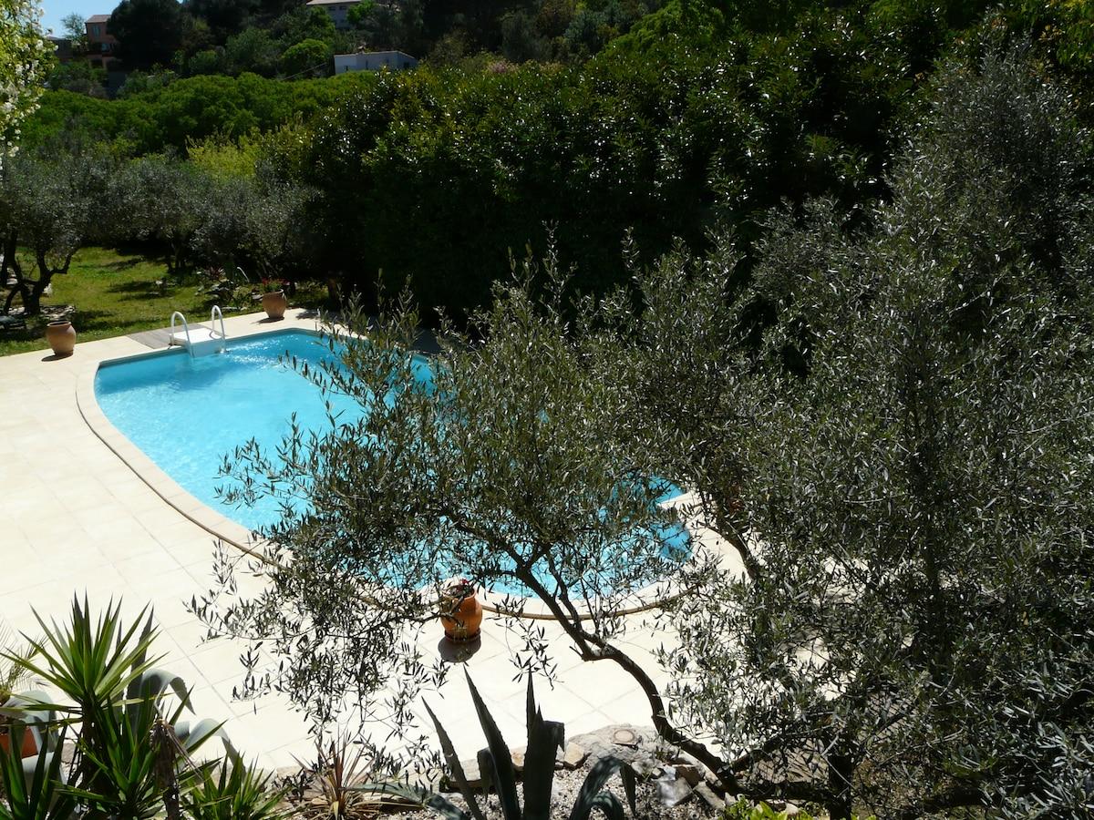 La piscine vue du gite