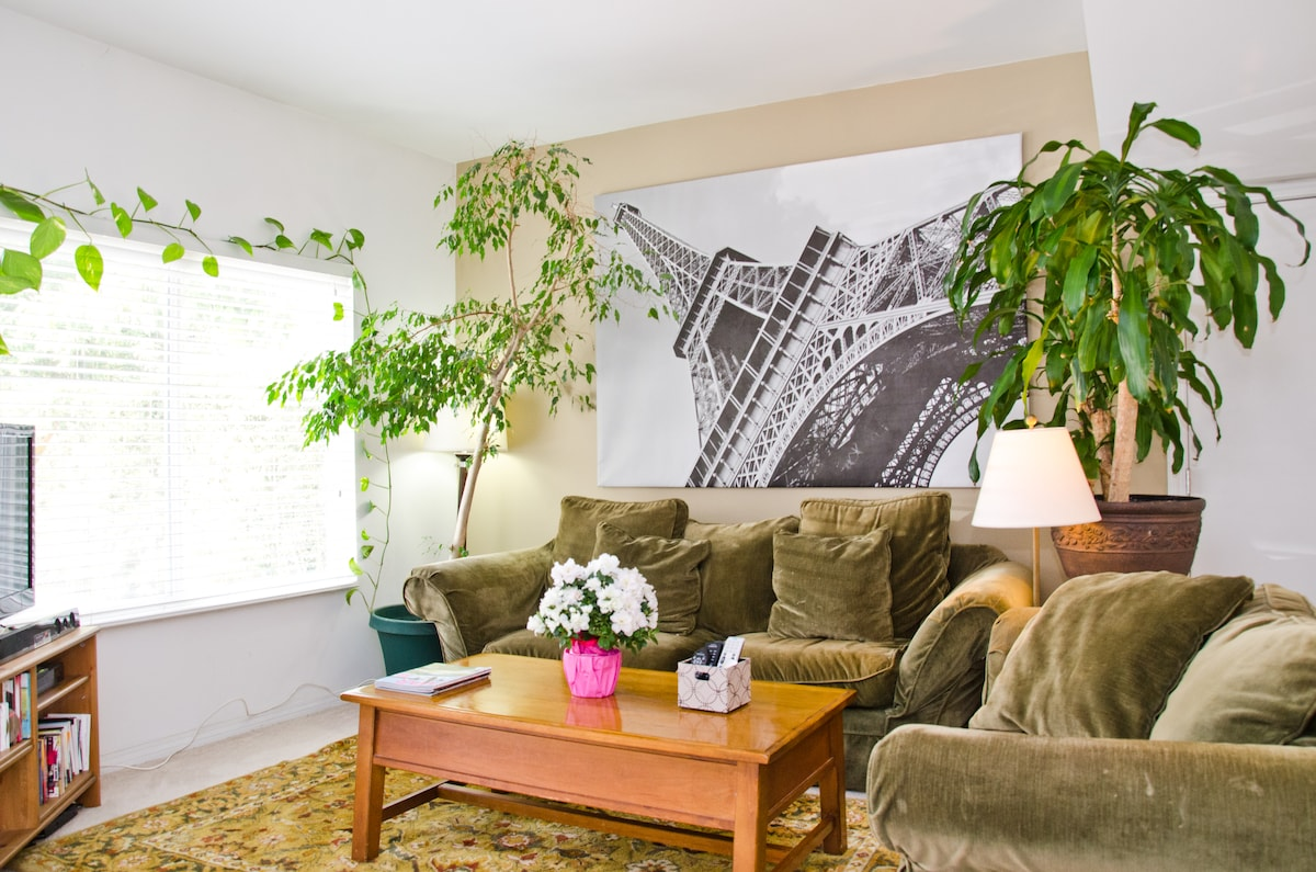 Shared living room w/plenty of light, AC, and fast WiFi.