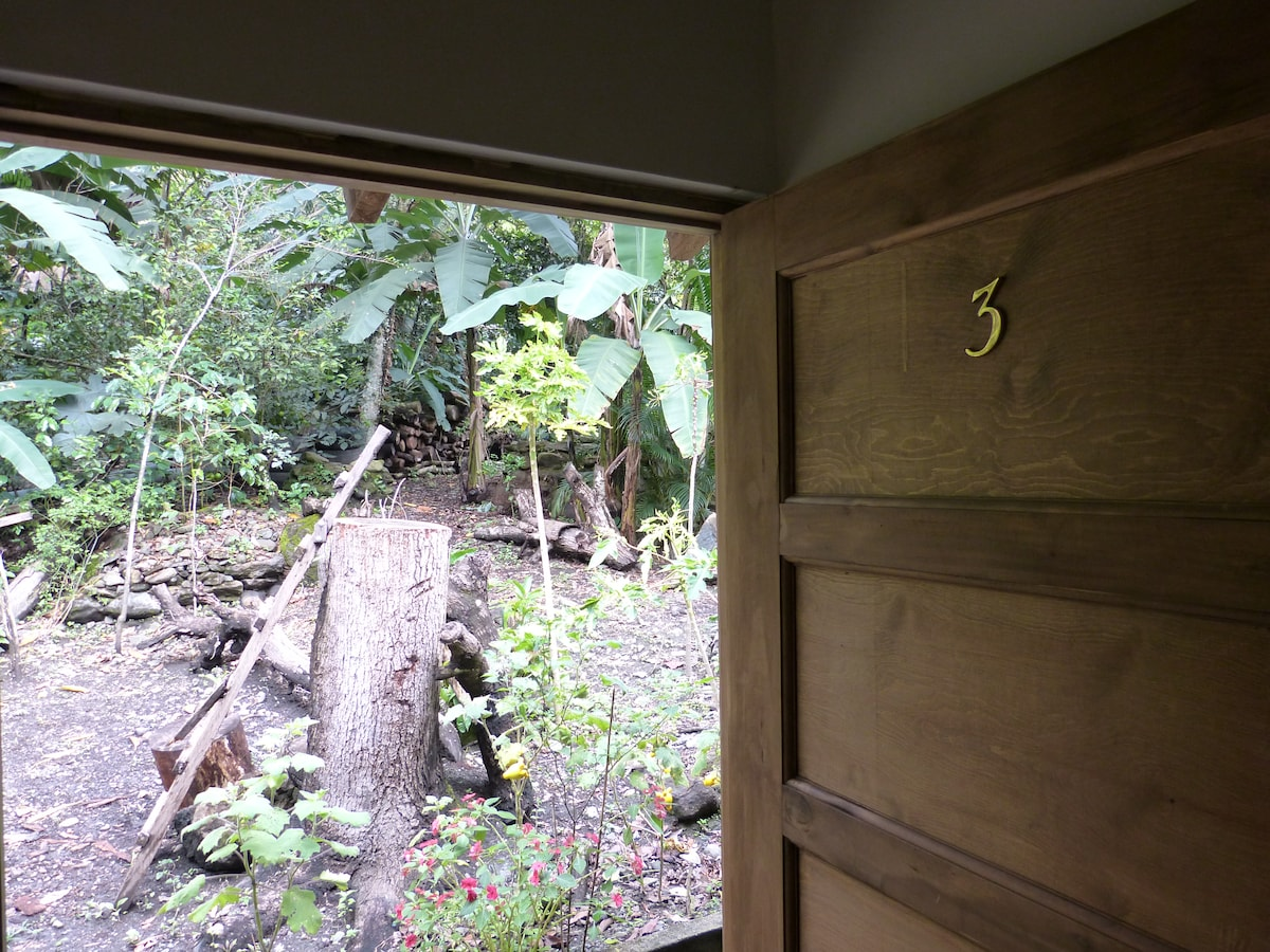 View of the forest and gardens outside your room.