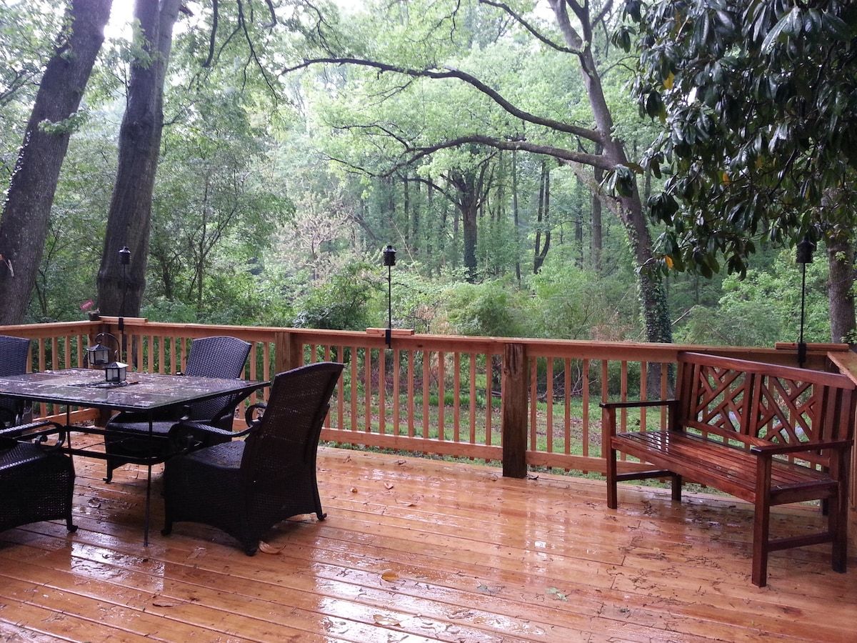 View from deck on a wet Atlanta day.