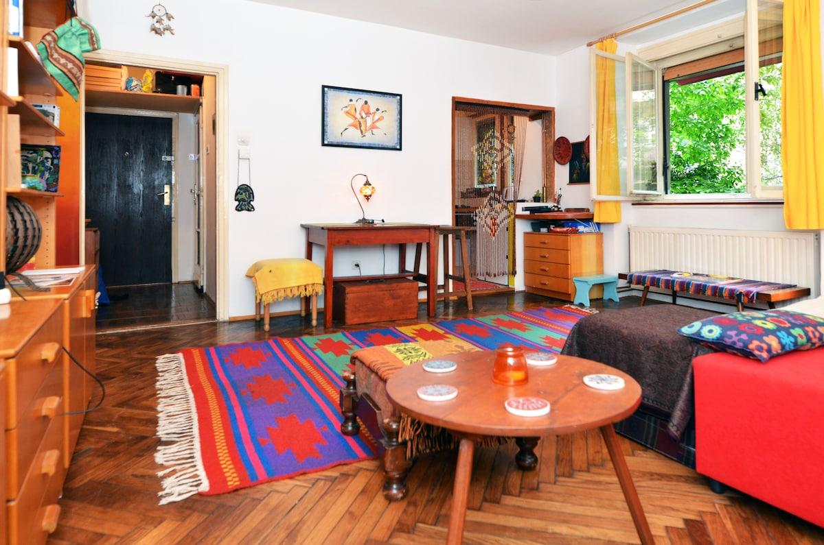 Cozy artistic studio apartment
