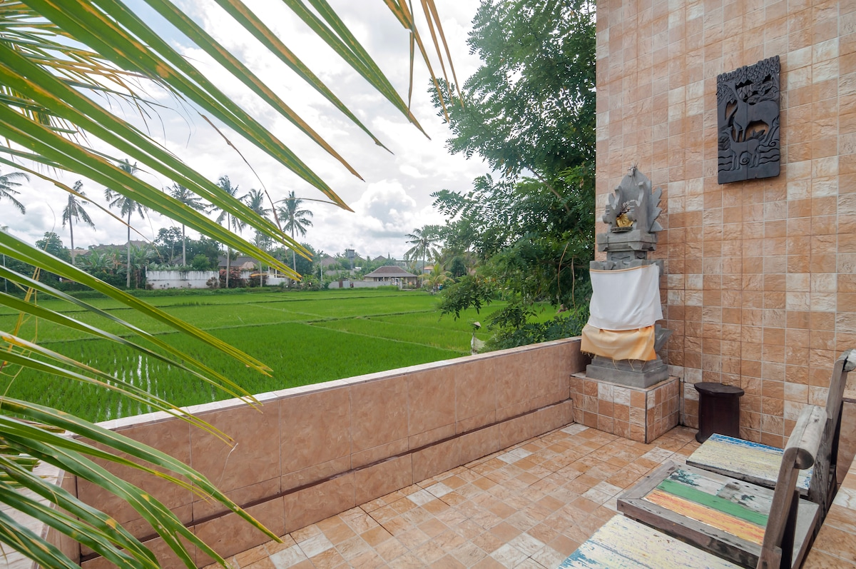Ricefield view terrace
