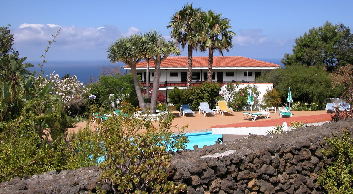 Studios with sea view and pool