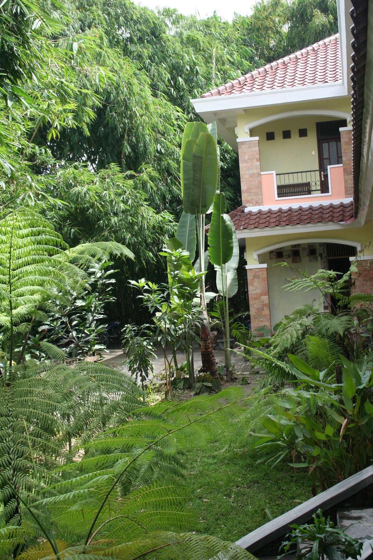 """Standard rooms : no AC, twin sharing bed fully furnished,private veranda & bathroom, 29"""" LED TV"""