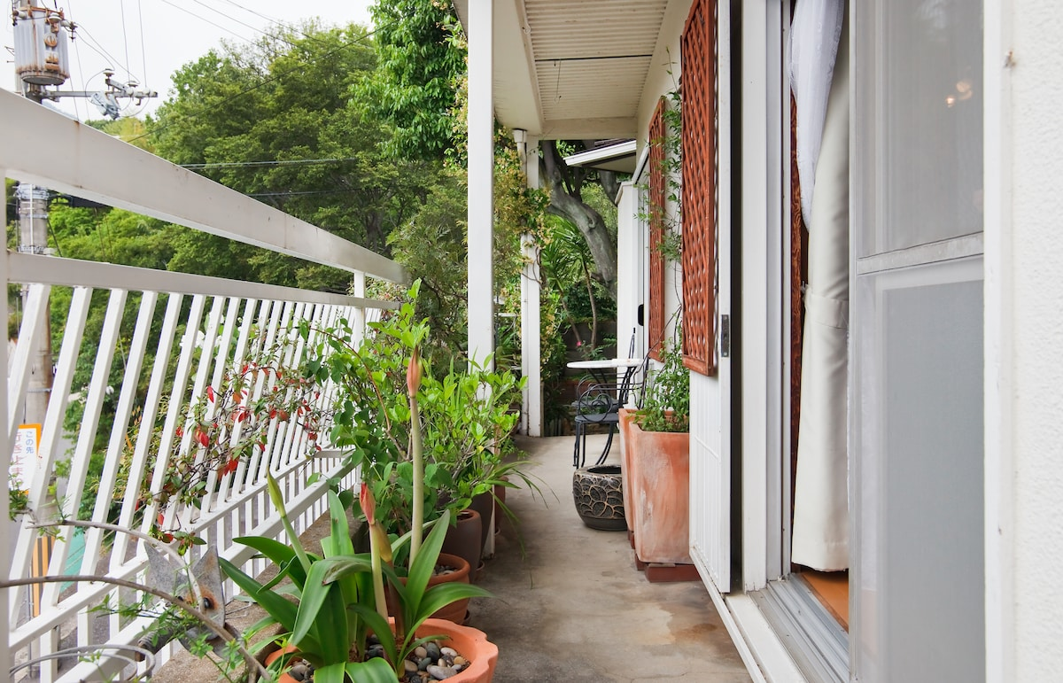 The downstairs verandah. This is above street level. Height and plants give you relative privacy to enjoy morning coffee and newspaper, a book, an evening drink, and the view up to the mountains.