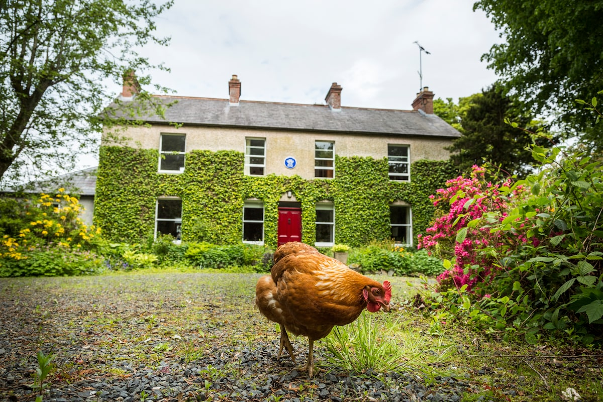 Lovely Country Retreat in Co Down