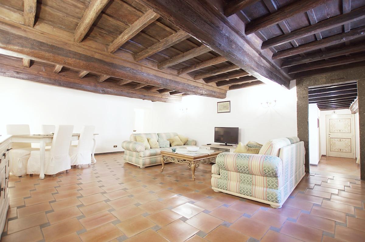 Historic Apartament in P.zza Navona