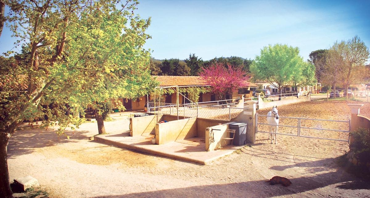 Equestrian cottage 15min Avignon