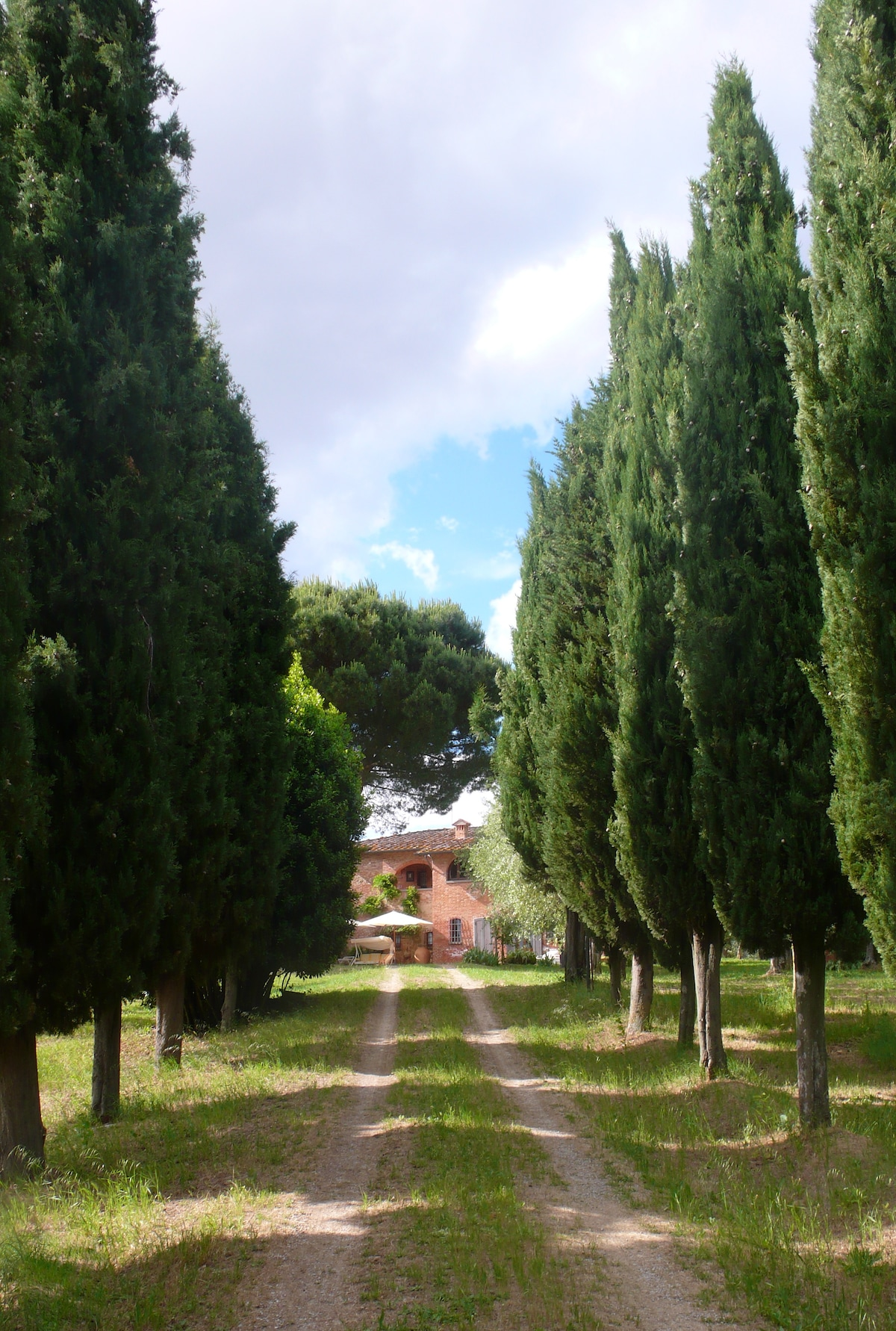 cypress flanked path