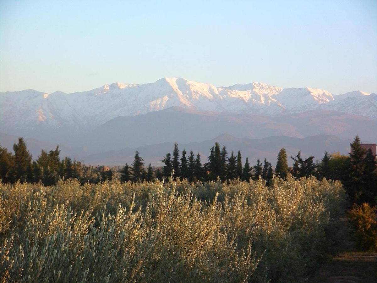 Maison-Jardin face aux montagnes