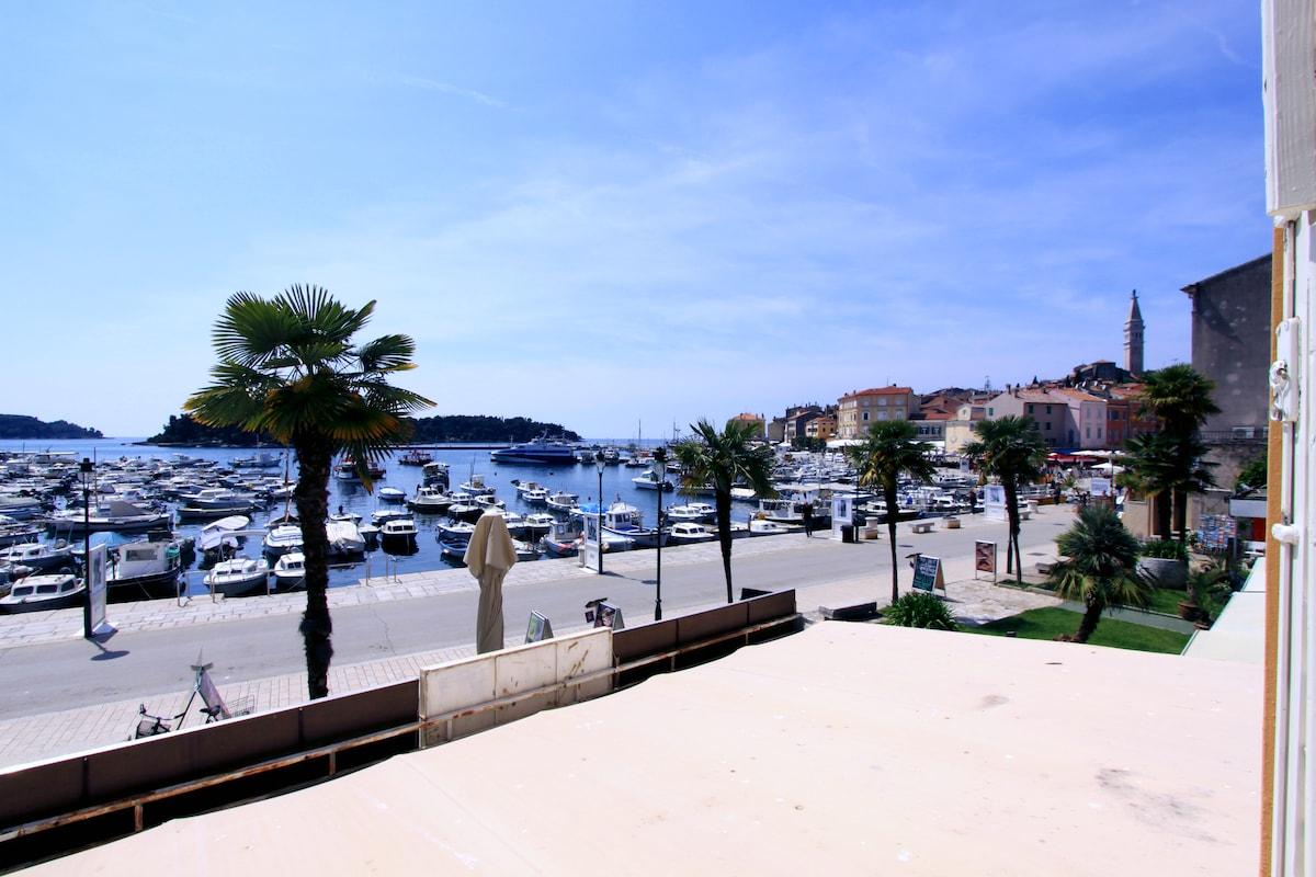 Amazing view on the Rovinj's Port
