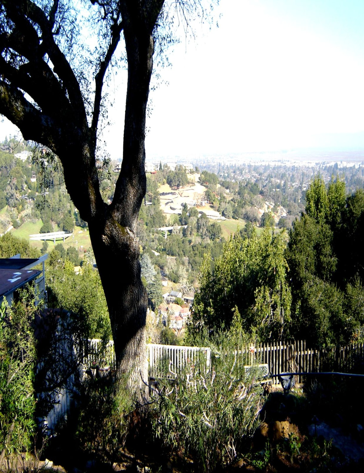 1.2 acres of privacy. Studded with Oak trees and a beautiful garden. Amazing views from Oakland to the Dumbarton Bridge