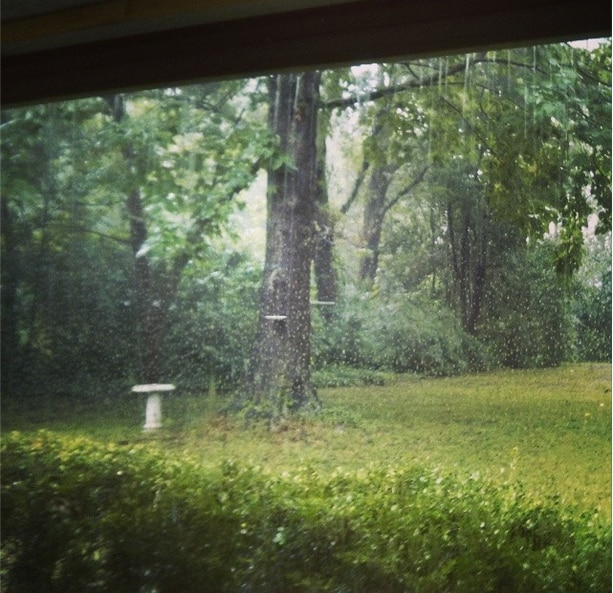 View from back porch in a rainstorm