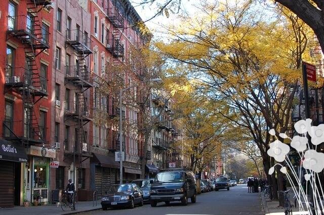 East Village/Union Square 1Bdrm Gem