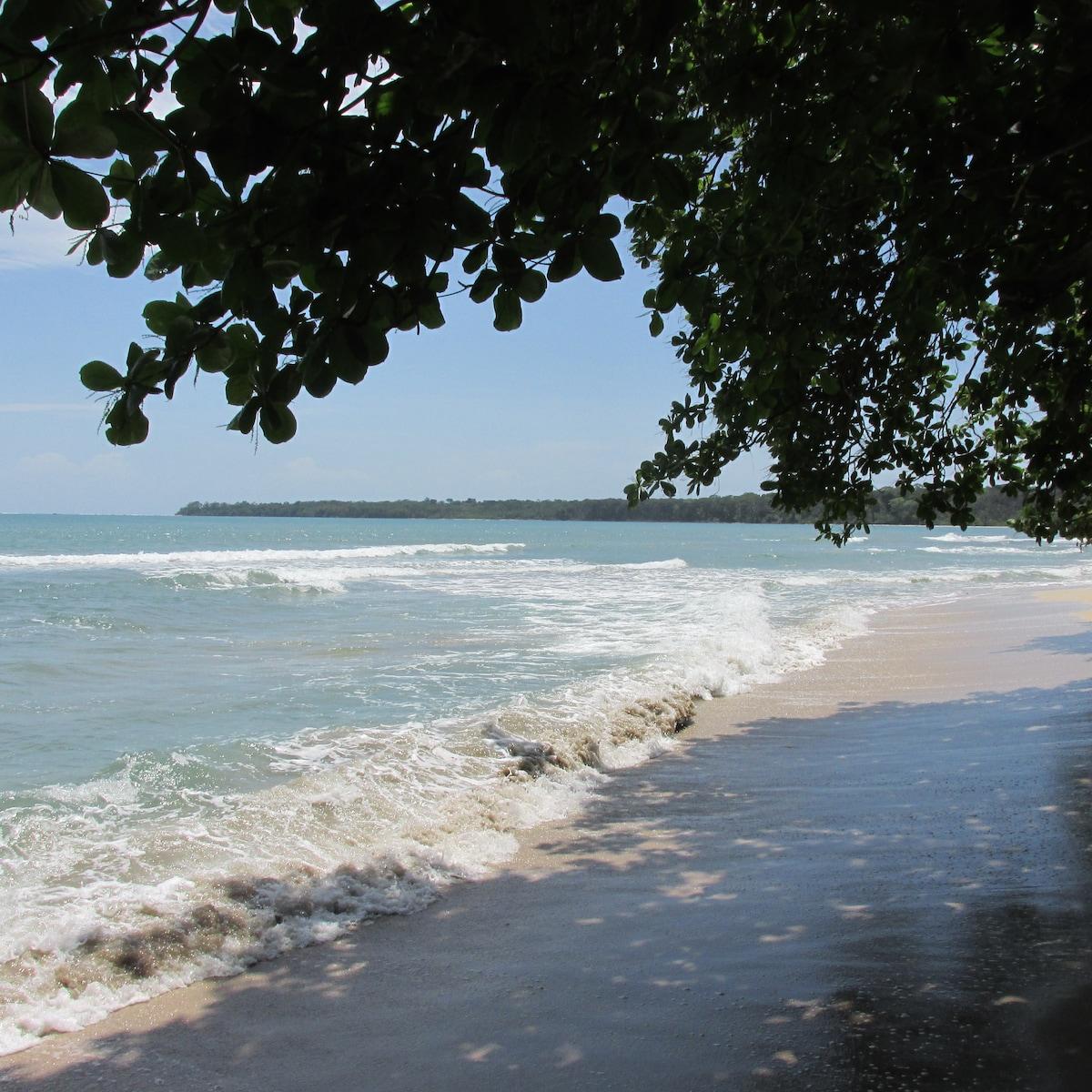 Warm Caribbean waters.