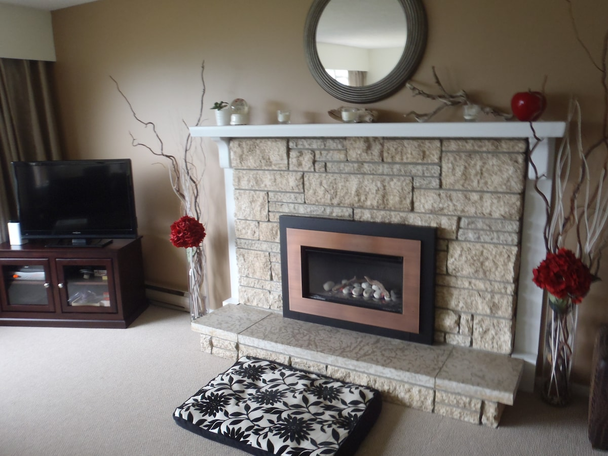 Gas fireplace and LCD TV with AppleTV, Blu-Ray player.