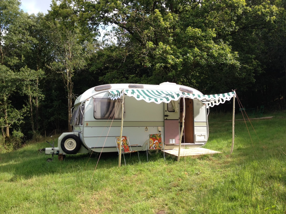 Stay in Daisy a vintage caravan
