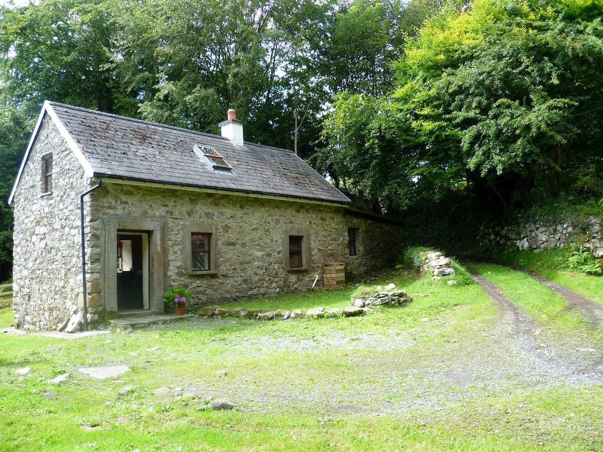 Rathosey cottage, in the heart of the countryside.