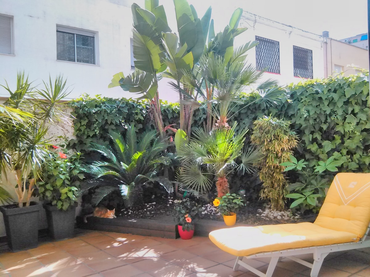 Our palm tree terrace with our cat KT from Paris