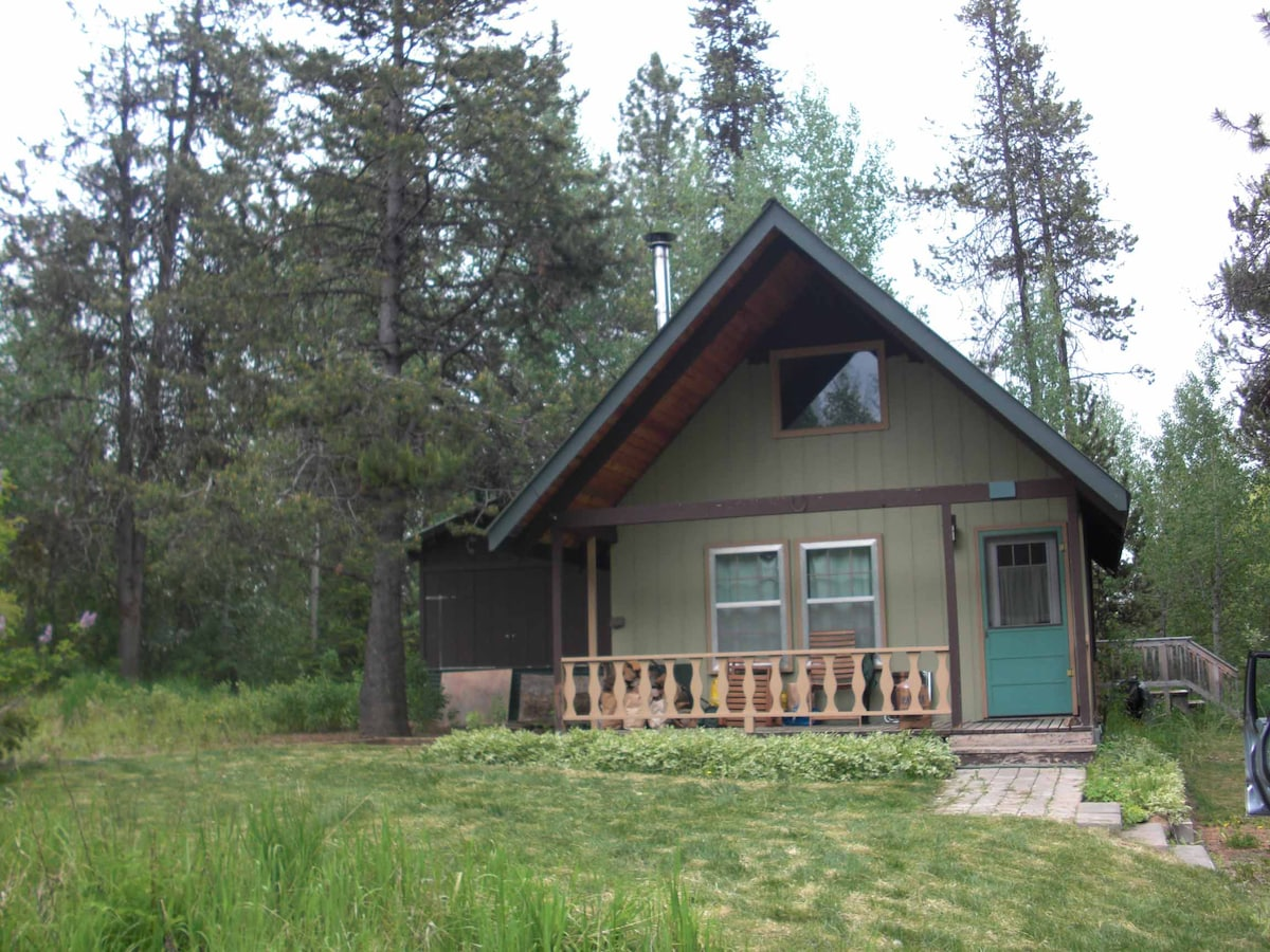 Cabin in woods, town & peace, 2+bd