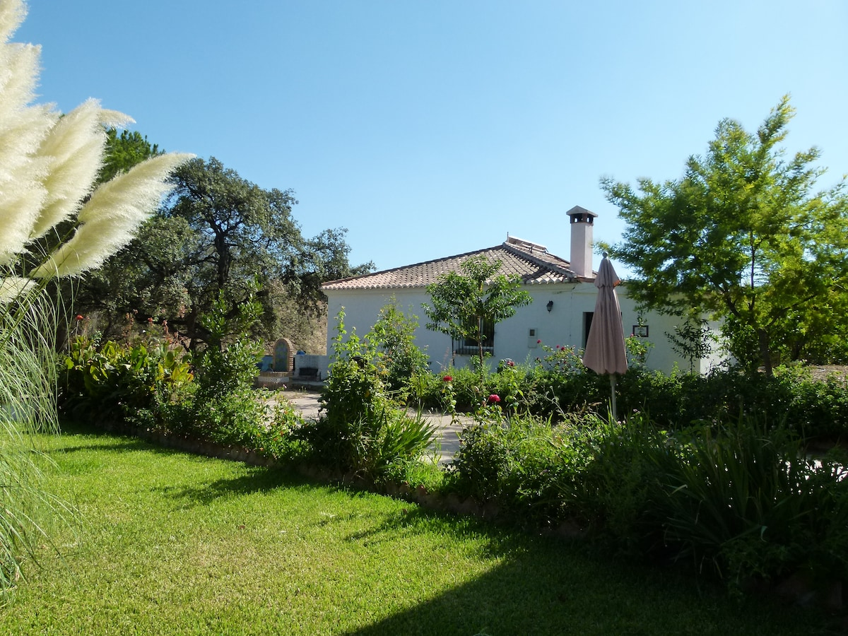 Finca in the countryside with pool
