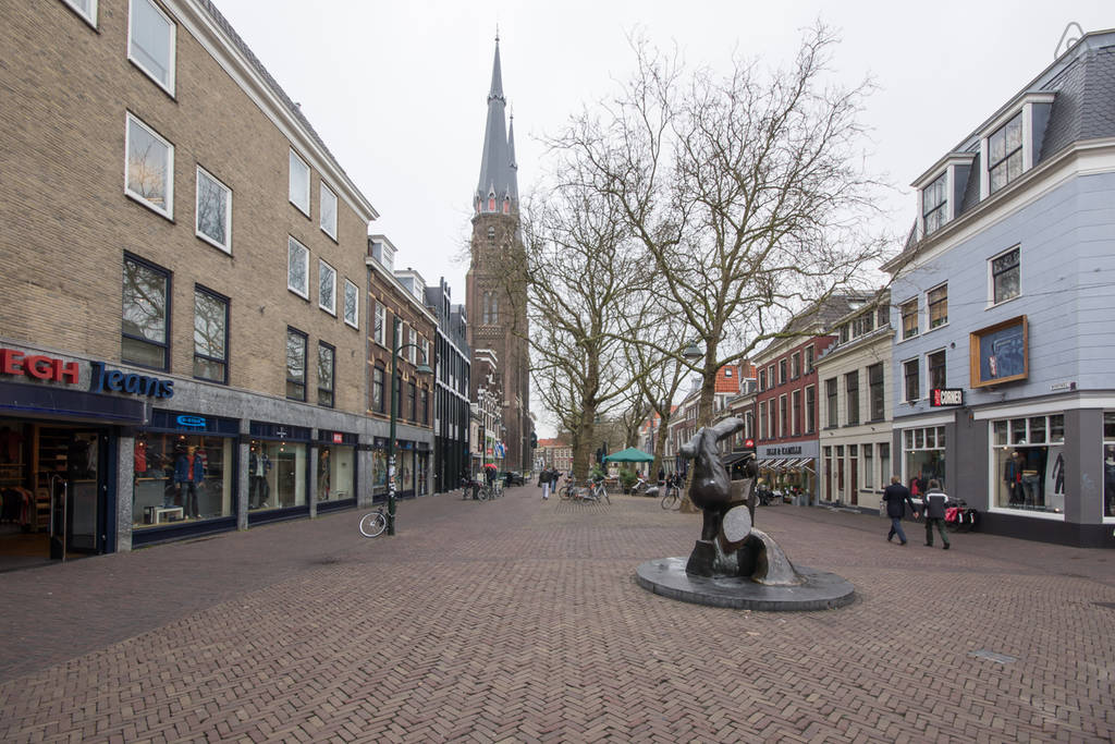 Apartment in the center of Delft II