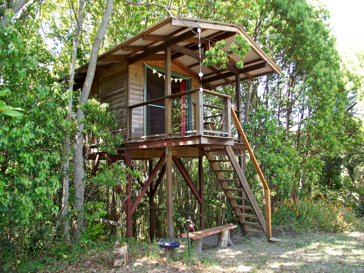 Tree house, Mullumbimby, near Byron
