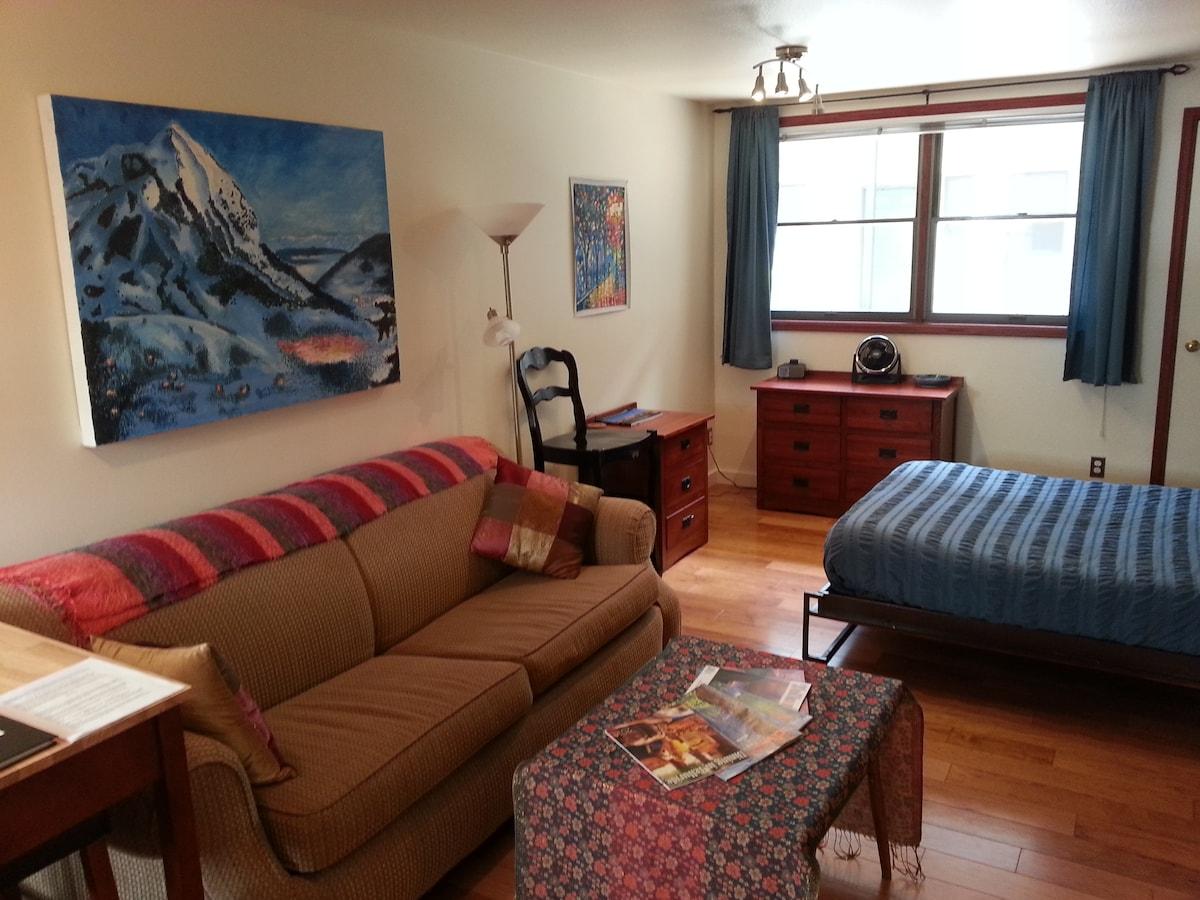 Studio Apartment 1 Block to Gondola