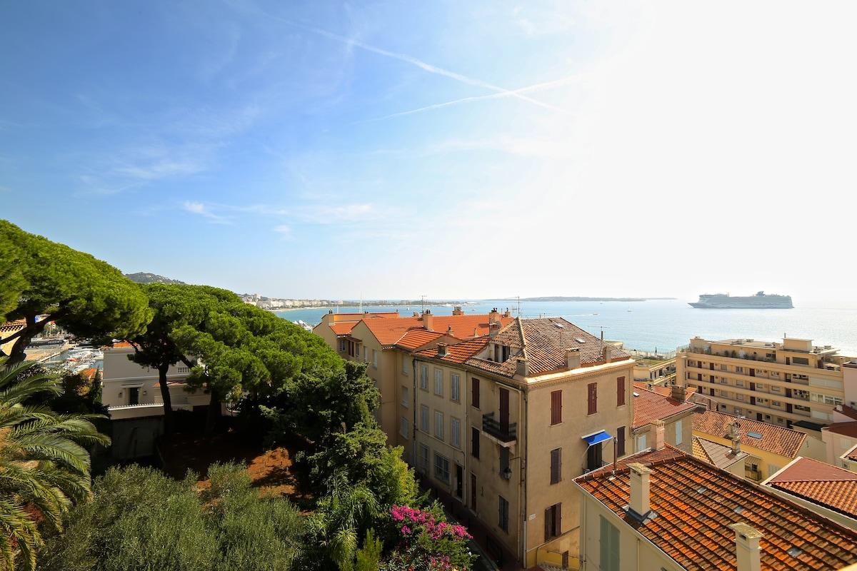 Penthouse 1bed apt,La Suquet,Cannes