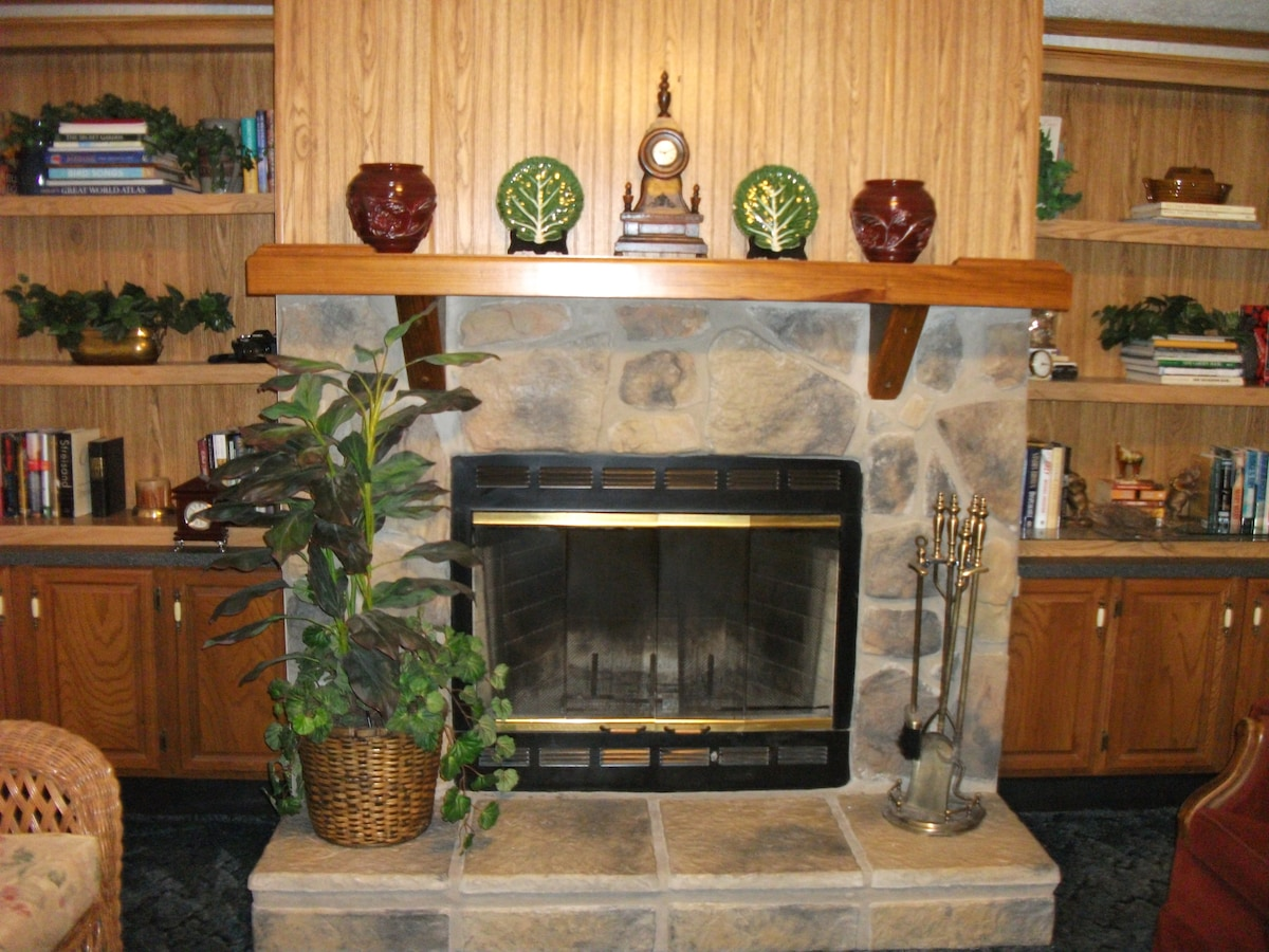 Fireplace in the Den With Book Case.
