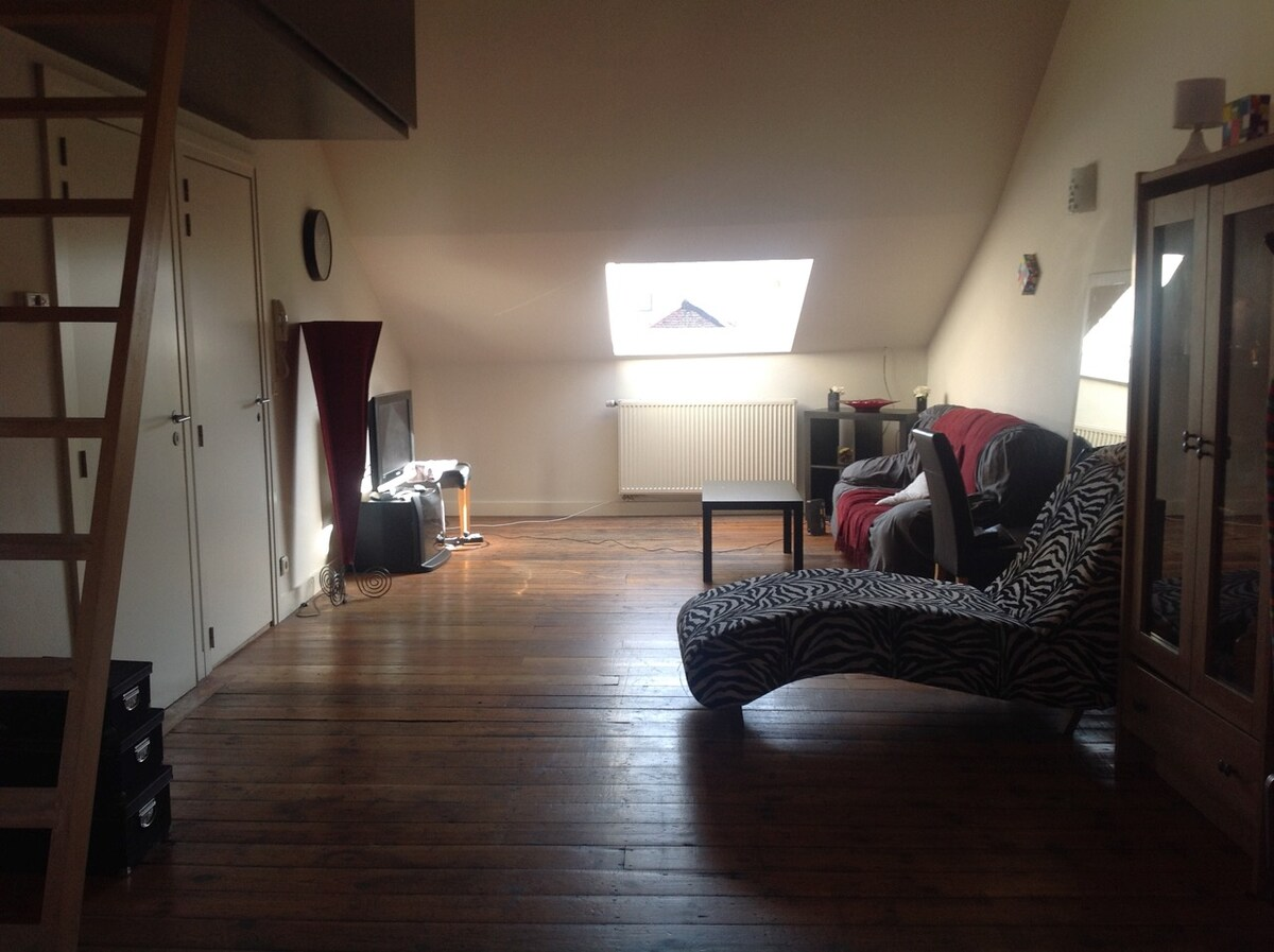 joli petit appartement cosy