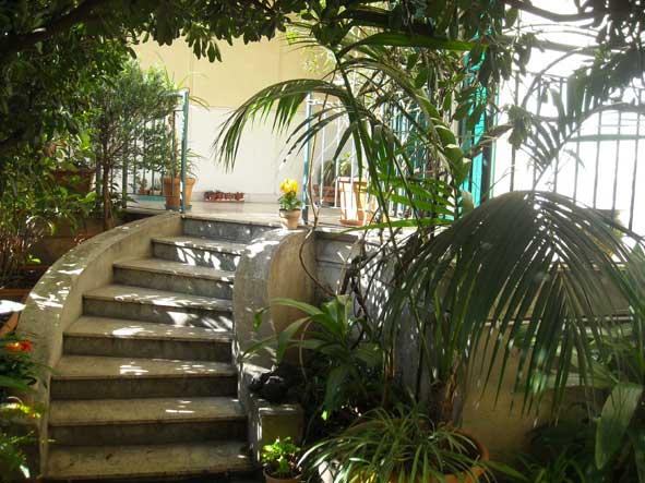 House + garden in the town center