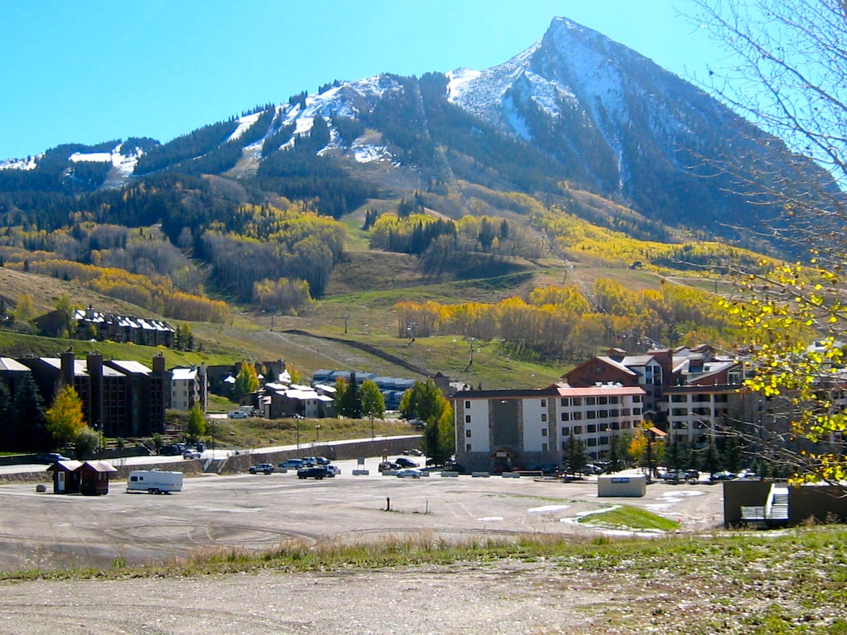 Affordable Condo~Mt Crested Butte